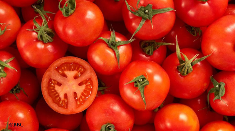 benefit of tomatoes Summer is the perfect time to enjoy the sweet and tangy flavor of tomatoes whether you buy them at the farmstand, the supermarket or.