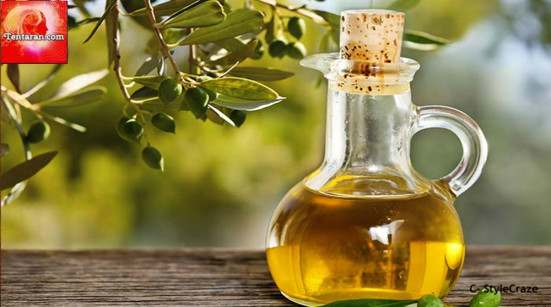 Olive Oil for maintaining hair health