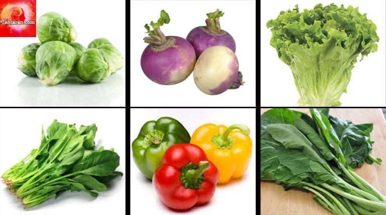 Food for healthy eyes : Eat Fruits and Vegetables for good eyes