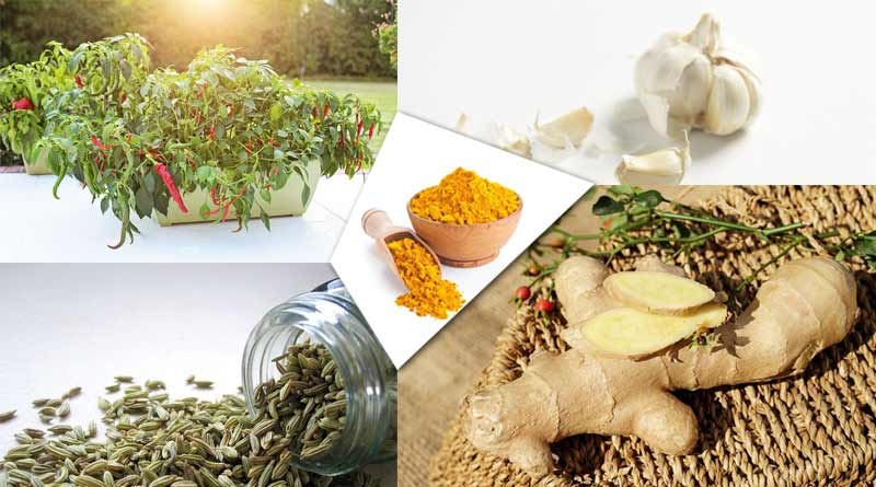 natural remedies for everyday health issues