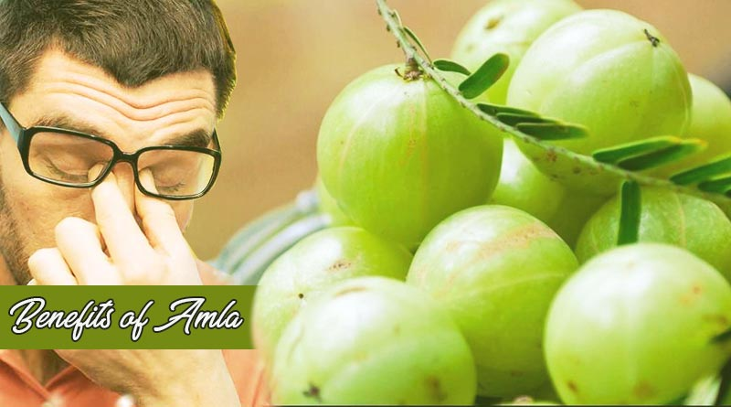 benefits of amla
