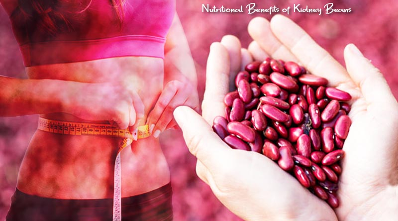 nutritional benefits of kidney beans