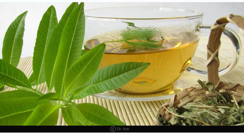 Lemon-verbena Tea