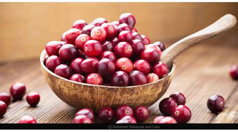 Other studies focusing on how can cranberries help cure UTI