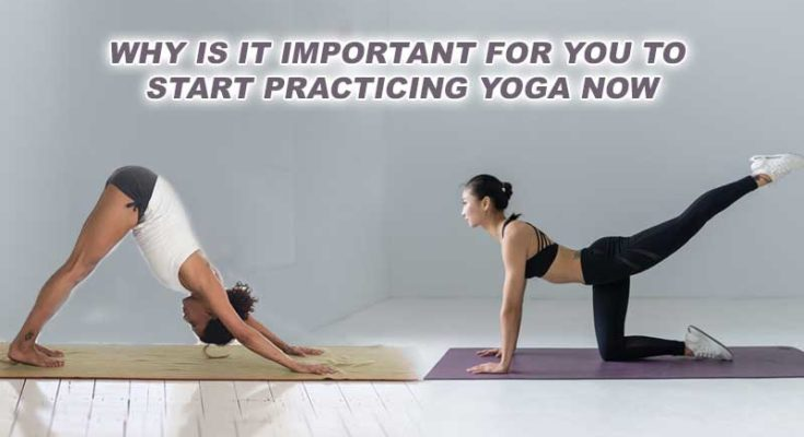start practicing yoga now