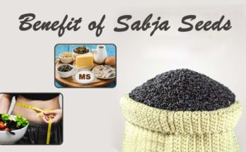 Sabja Seeds for Weight Loss