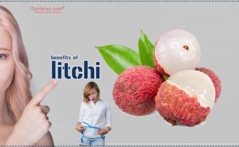 benefits of litchi