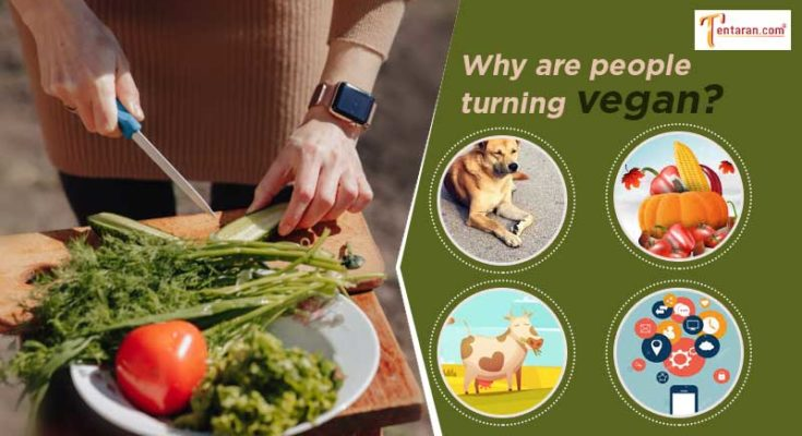 benefits of going vegan