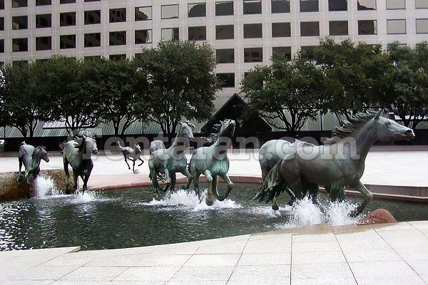 the mustangs of las colinas usa