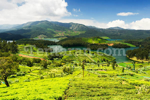 when to visit ooty