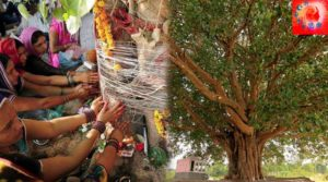 Why Peepal tree is worshipped by Hindus