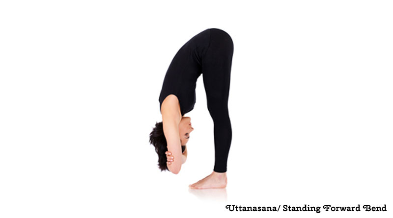 Standing Forward Bend Uttanasana Benefits
