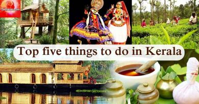 Top five things to do in Kerala