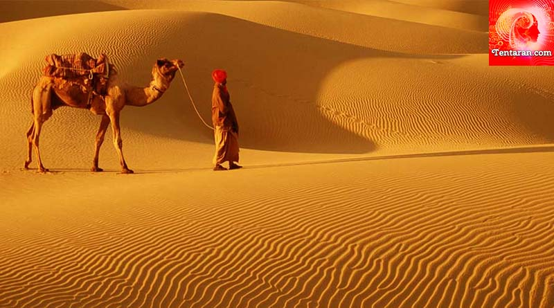 Five best places to visit in Rajasthan