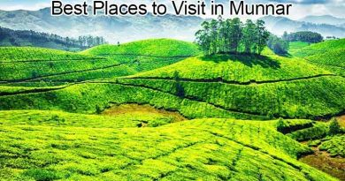 Five Best Places to Visit in Munnar