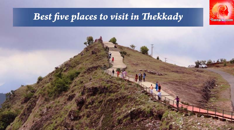 Best five places to visit in Thekkady copy