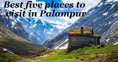 Five Best Places to Visit in Palampur