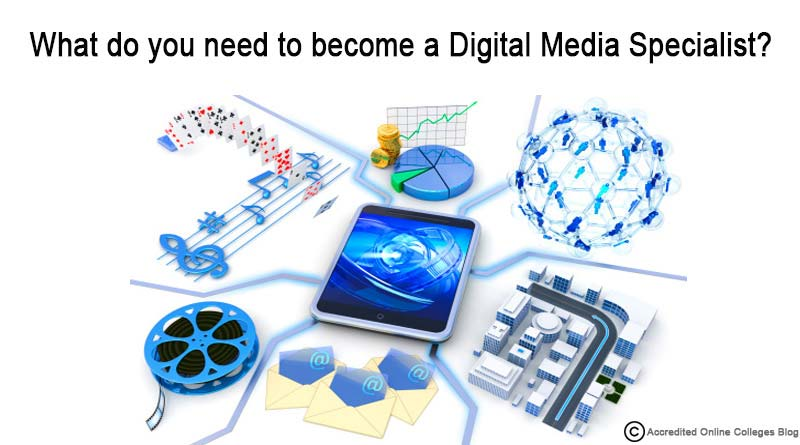 What do you need to become a Digital Media Specialist