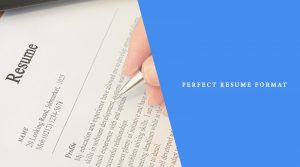 Perfect Resume Format For Job Seekers