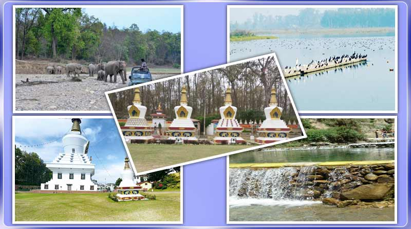 Five Best Places to Visit in Dehradun