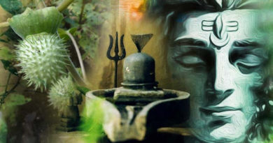 Why Lord Shiva is offered Datura
