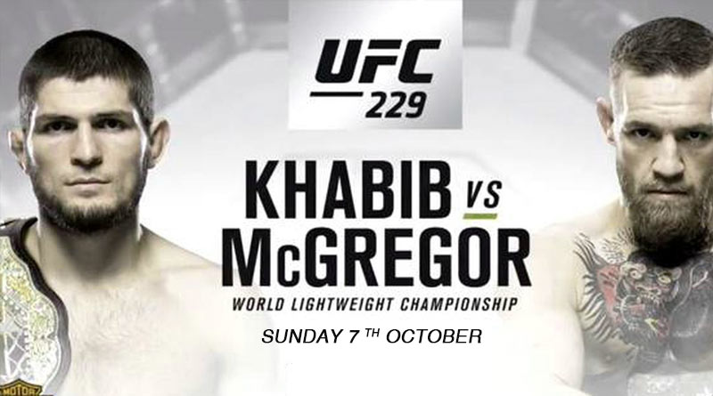 Ultimate Fighting Championship 229