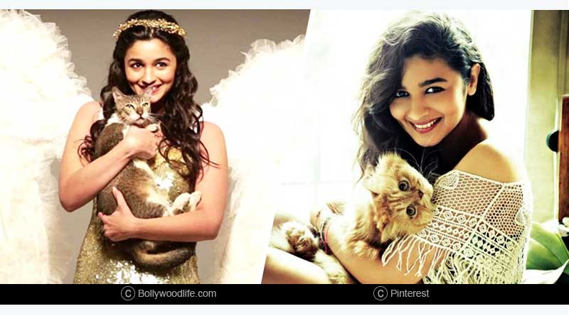 Unknown facts about Alia Bhatt in hindi