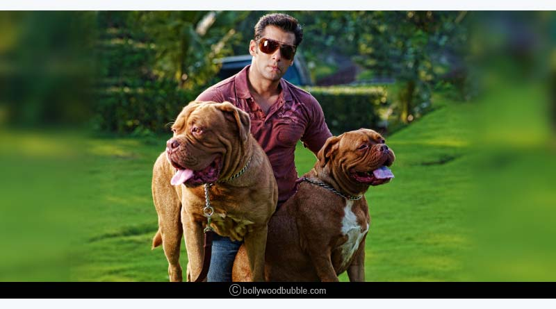 Salman Khan's Bull Mastiff, Myjaan and Mylove