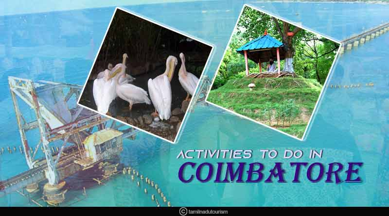 activities to do in Coimbatore