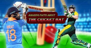 Amazing facts about cricket bat