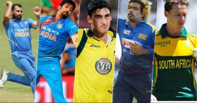 Top fast bowlers in World Cup 2019