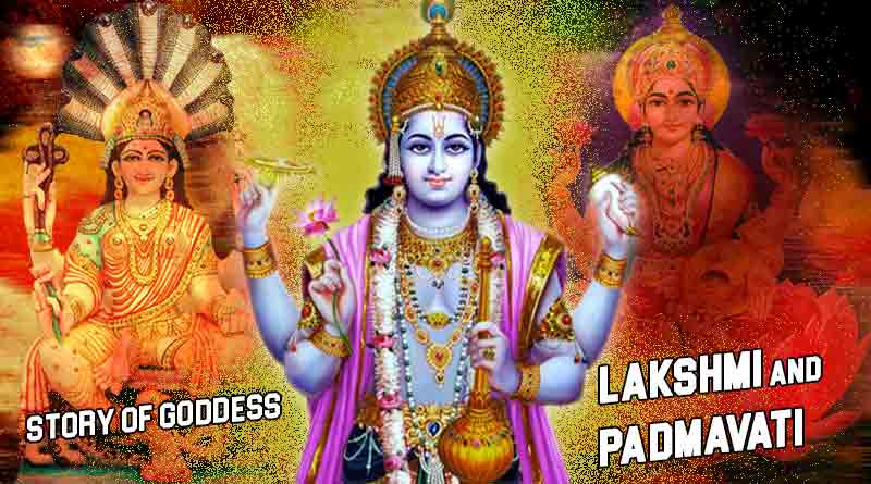 story of goddess lakshmi and padmavati