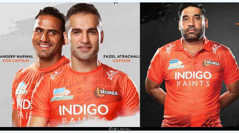 Pro kabaddi league team owner captain coach name