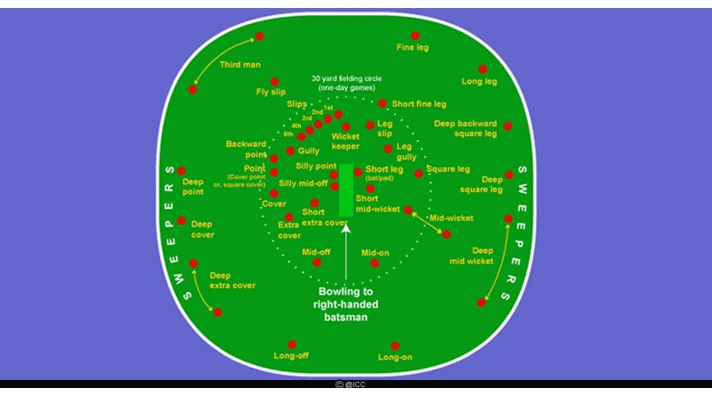 cricket field positions chart