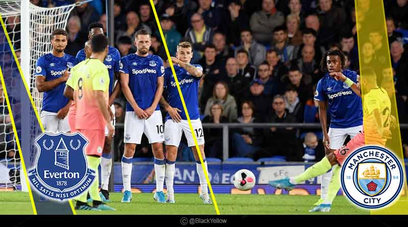 everton vs manchester city 2019 highlights