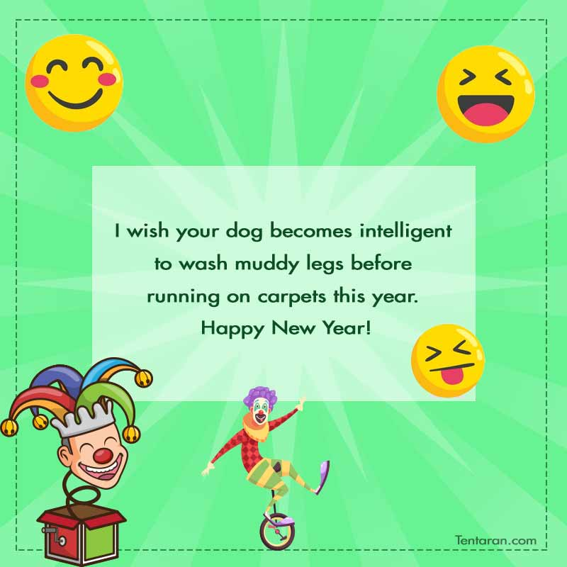 funny new year 2020 quotes image9