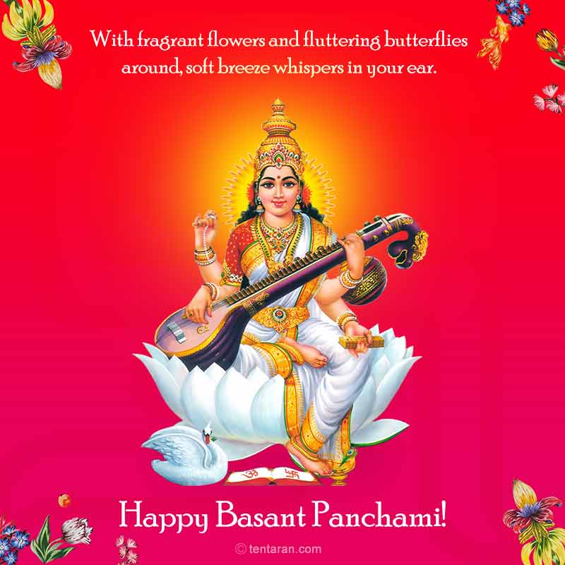 Basant panchmi quotes wishes english images whatsapp messages3