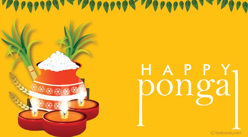 happy pongal 2021 images quotes