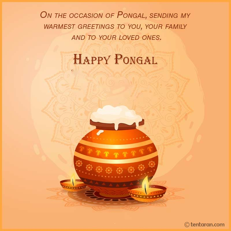 happy pongal image1