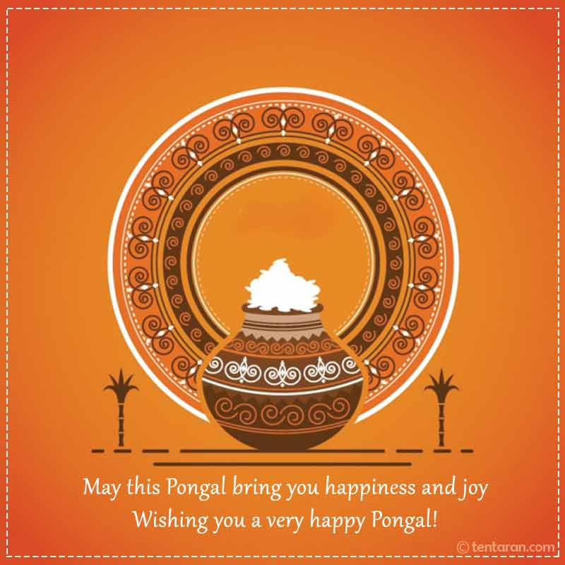 happy pongal image7