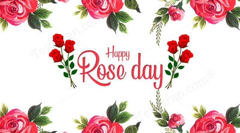 rose day quotes 2021 images wishes photos