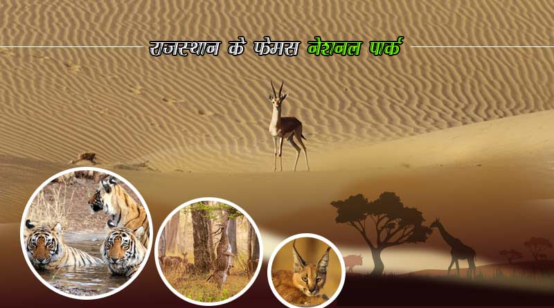 famous wildlife sanctuaries in rajasthan