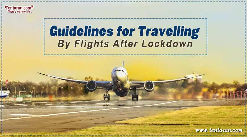 new airline guidelines for domestic flights during COVID-19