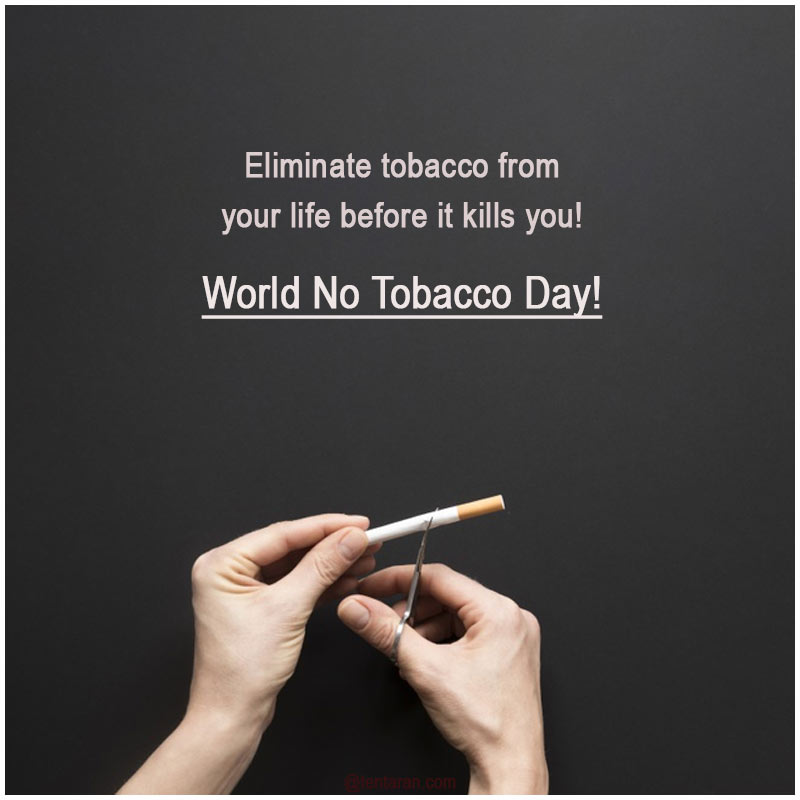 world no tobacco day images7