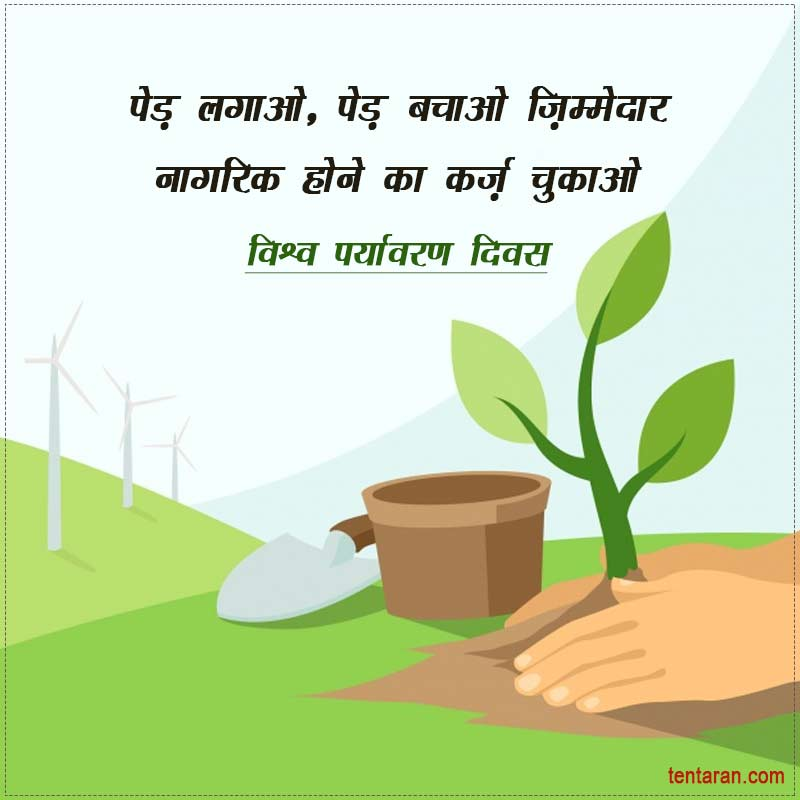 environment day images1
