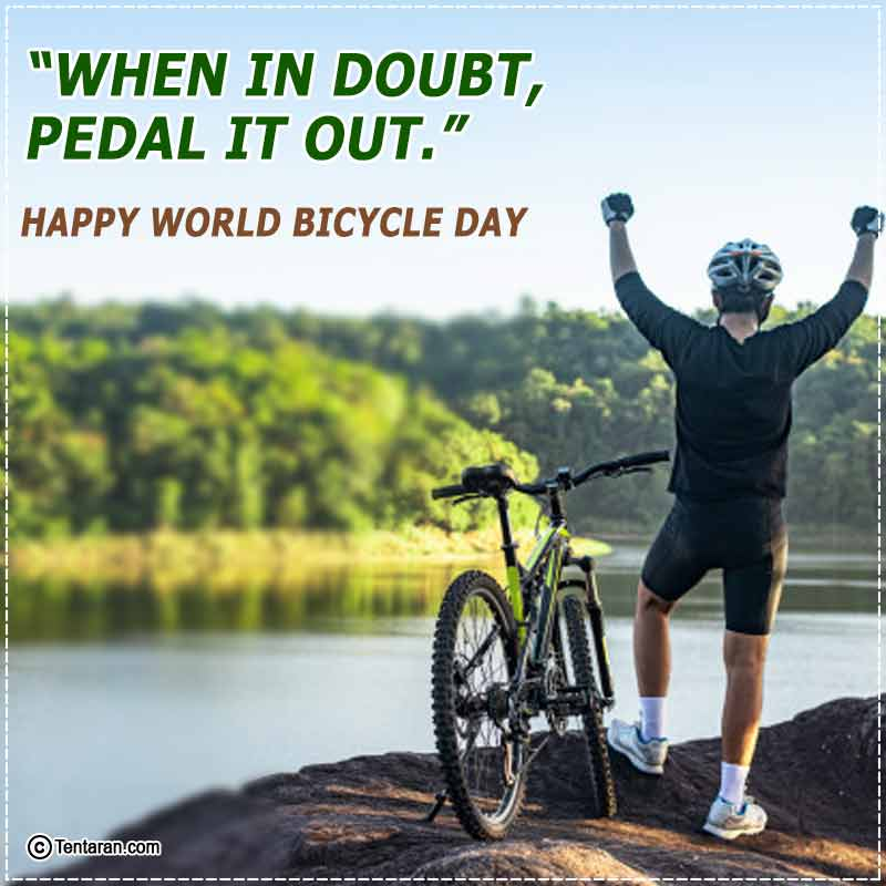 world bicycle day images4