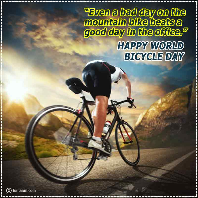 world bicycle day images6