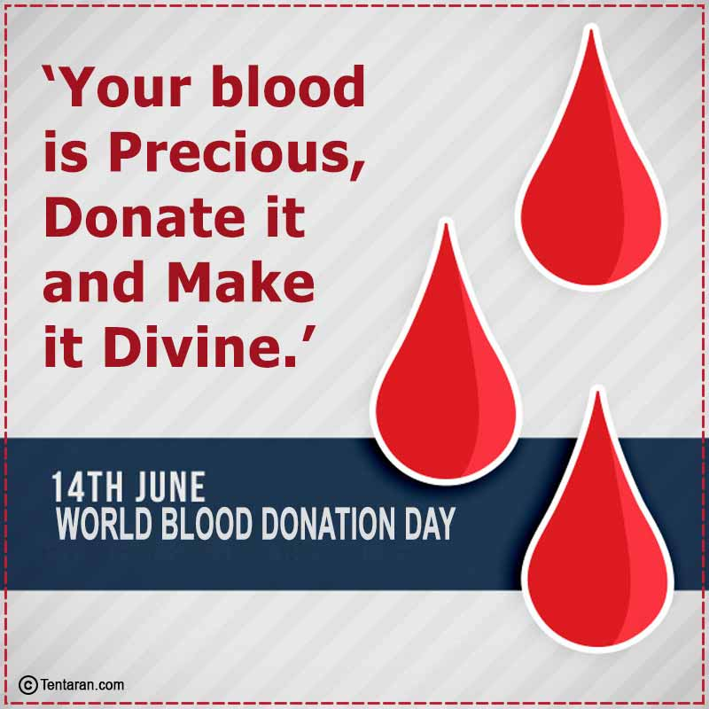 world blood donor day images8