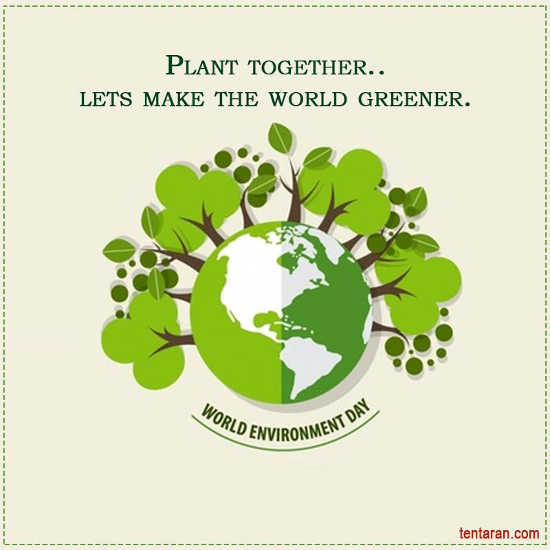 world environment day images9