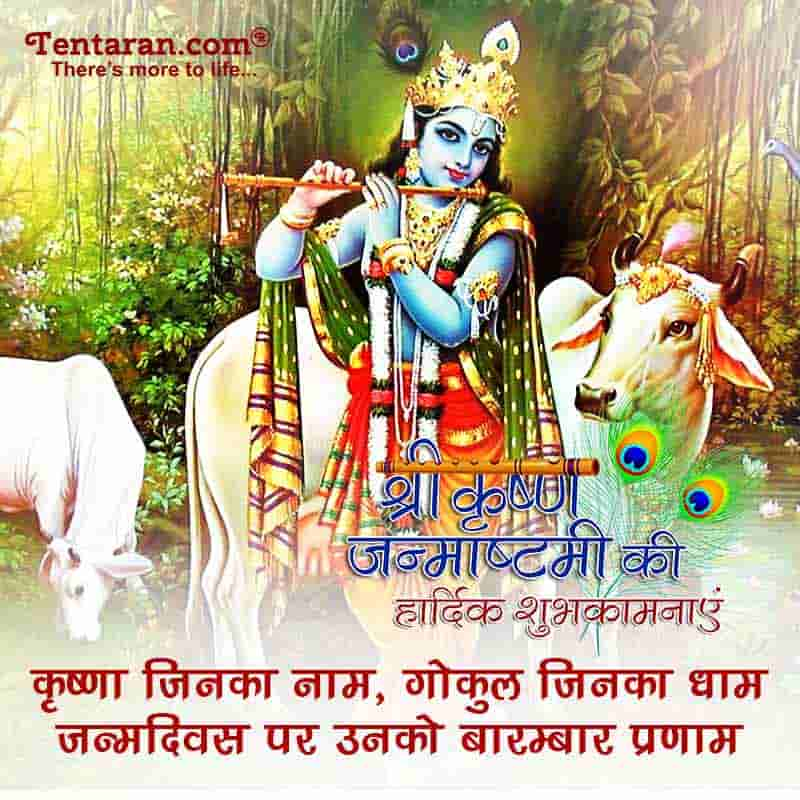 happy krishan janmashtami images9